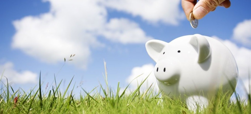 save_green_1000x666-e1366451222298